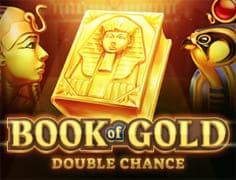 Слот Book of Gold: Double Chance