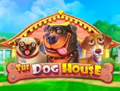 Слот The Dog House